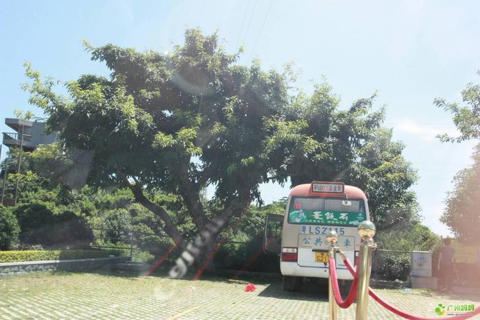 惠州亚婆角a妈妈之行-旅游休闲-广州妈妈论坛2阿猫阿狗攻略图片